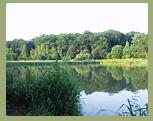 Reiterferien im Westerwald | Reiterferien | Reiterferien ...