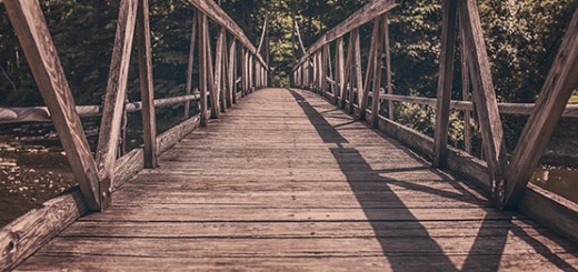 Who are the Bridge Builders in your life? How do you honor them?