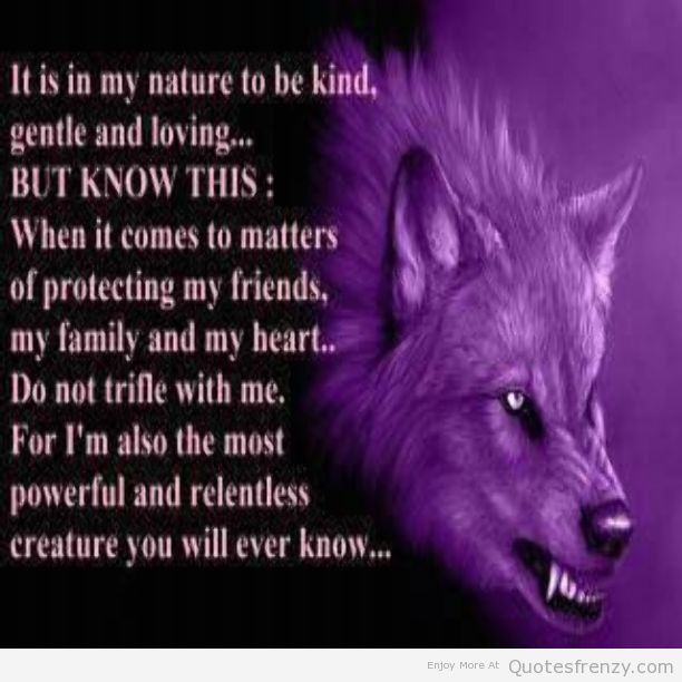 Lone Wolf Wallpaper Quote Wolf Quotes Image Quotes At Relatably Com