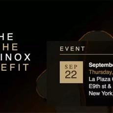 ashe equinox benefit – video performance