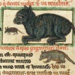 medieval-cats-650x434