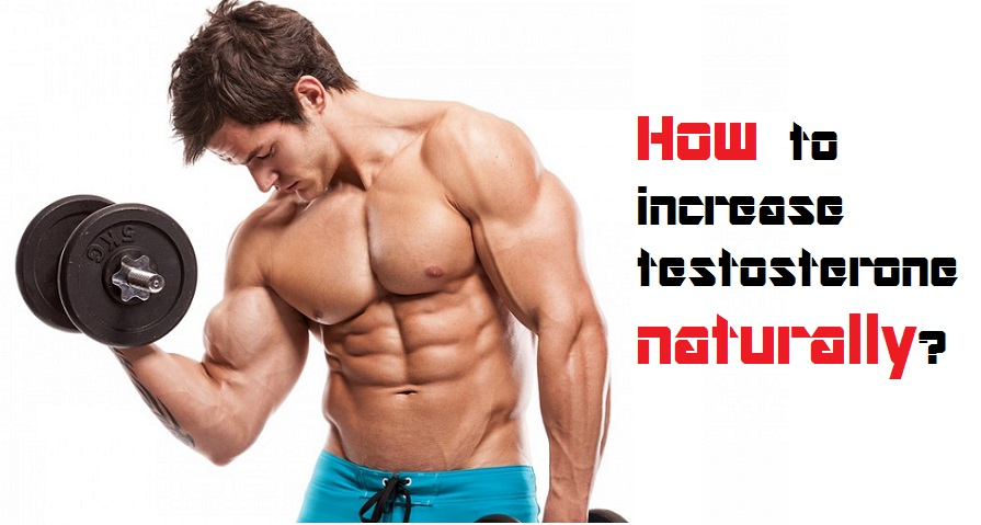 how-to-increase-testosterone