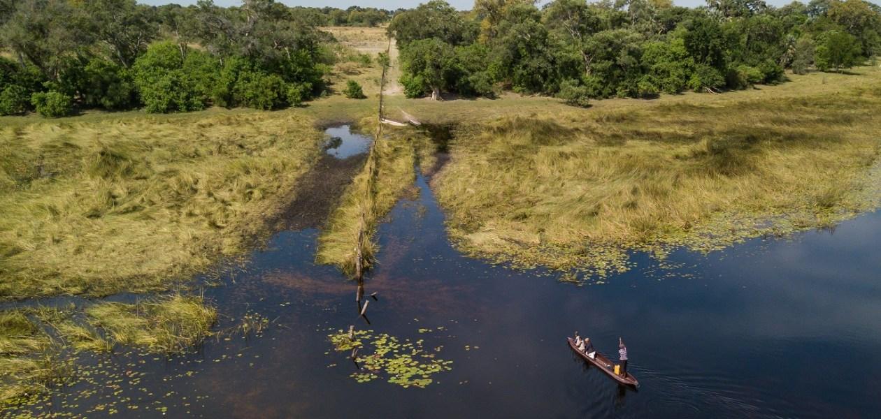 Delta Okavango-0305 - Copie