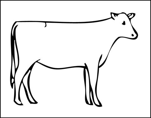 Cow Head Line Drawing