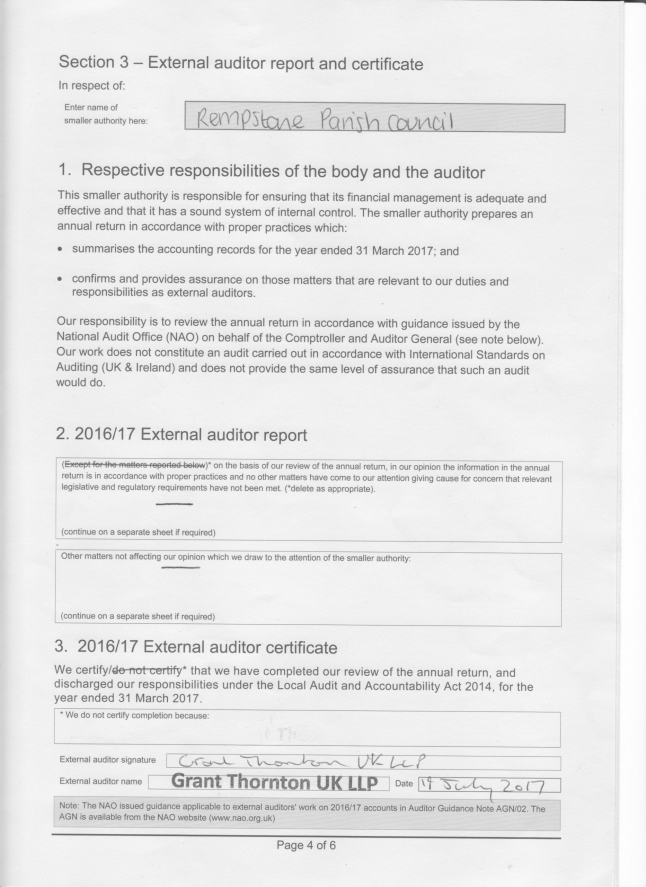 external audit report cv essayoneprofessional us 24