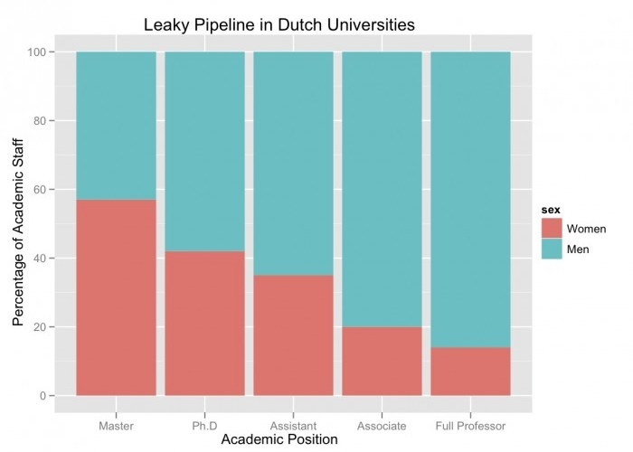 Leaky Pipeline in Dutch Universities