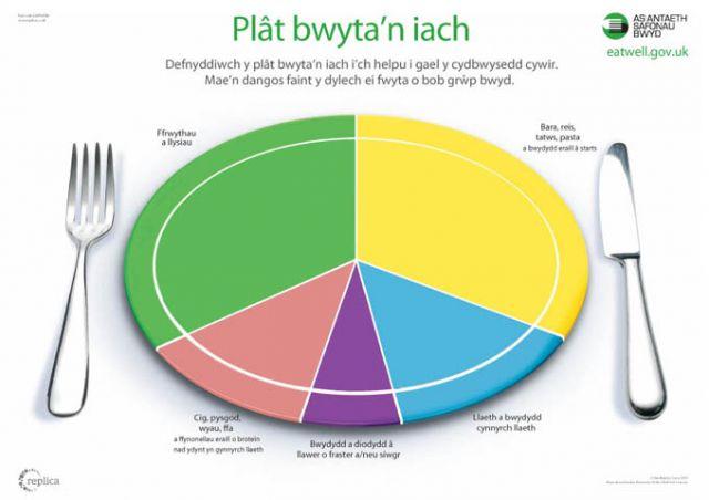 Replica Eatwell Plate Welsh Plain Size A1 84cm X 60cm