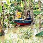 En el sur de Maracaibo se perdieron cosechas y hay 21,000 damnificados, reporto la Gobernacion del ZULIA.