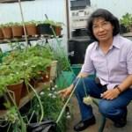 El Gobierno aprobó la Ley de Atención Agrícola que establece plazo hasta de 10 años para pagar créditos reestructurados.