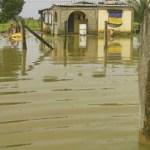 Algunas viviendas también quedaron anegadas y sin asistencia de las autoridades del estado.