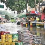 El presidente de Fedeagro, Pedro Rivas, a su juicio el sector padece serios problemas por la falta de políticas concertadas, además de otras complicaciones producto de las lluvias.