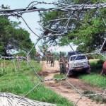 Provea recoge en un informe del año 2006 la muerte de 8 personas, entre ellos dos niños, en una finca en el Alto Apure que sigue el mismo patrón.