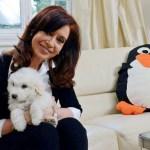 La presidenta argentina, Cristina Fernández, reapareció hoy, tras completar su recuperación de una neurocirugía a la que fue sometida el pasado 8 de octubre, en un vídeo que publicó en Twitter, en el que se le ve de buen ánimo y feliz con su nuevo perro (Simón).