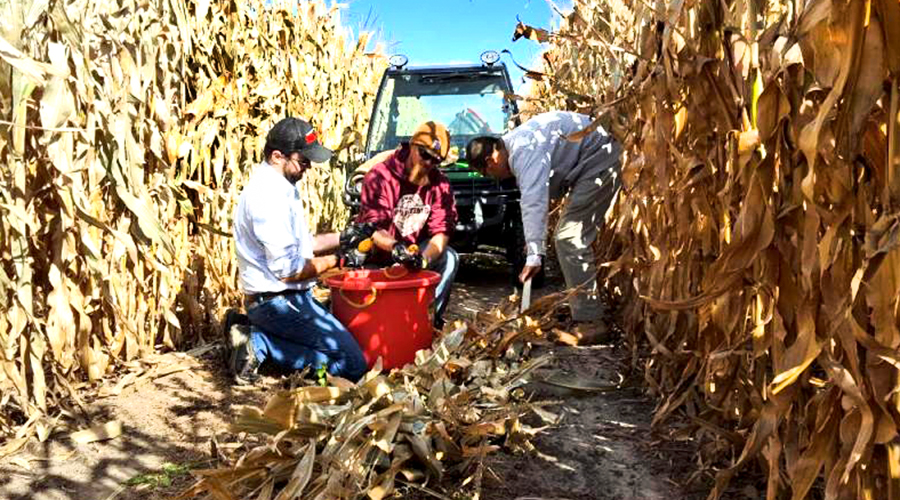 The Republican Nonpareil Crop Watch Competition Encourages Ag