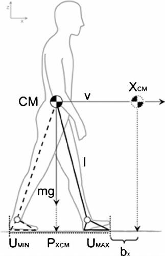 fig 5 inverted pendulum body diagram
