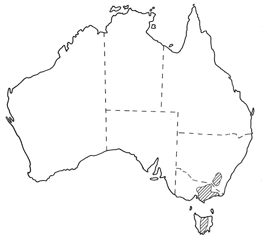 australian paralysis tick diagram