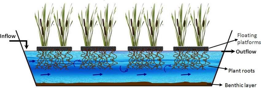 Schematic representation of Floating Treatment Wetlands Download