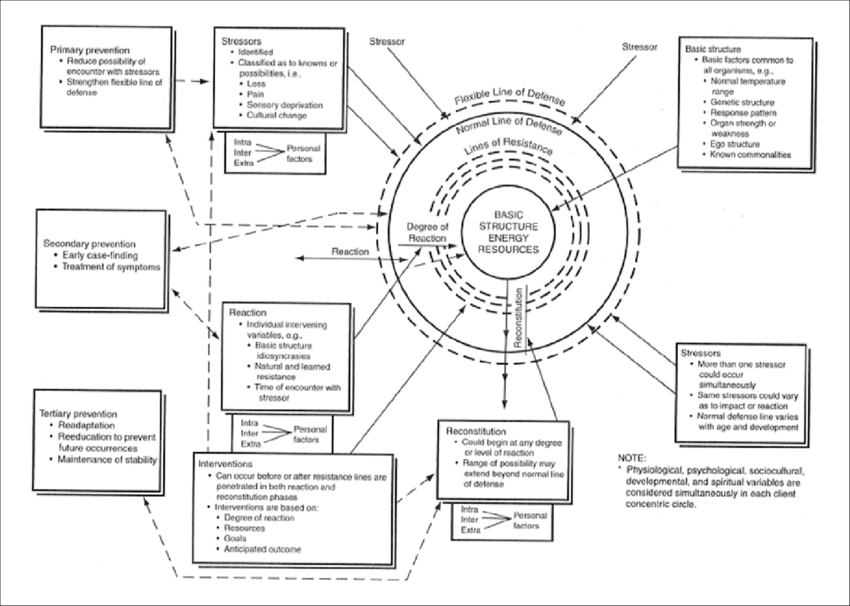 neuman systems model diagram