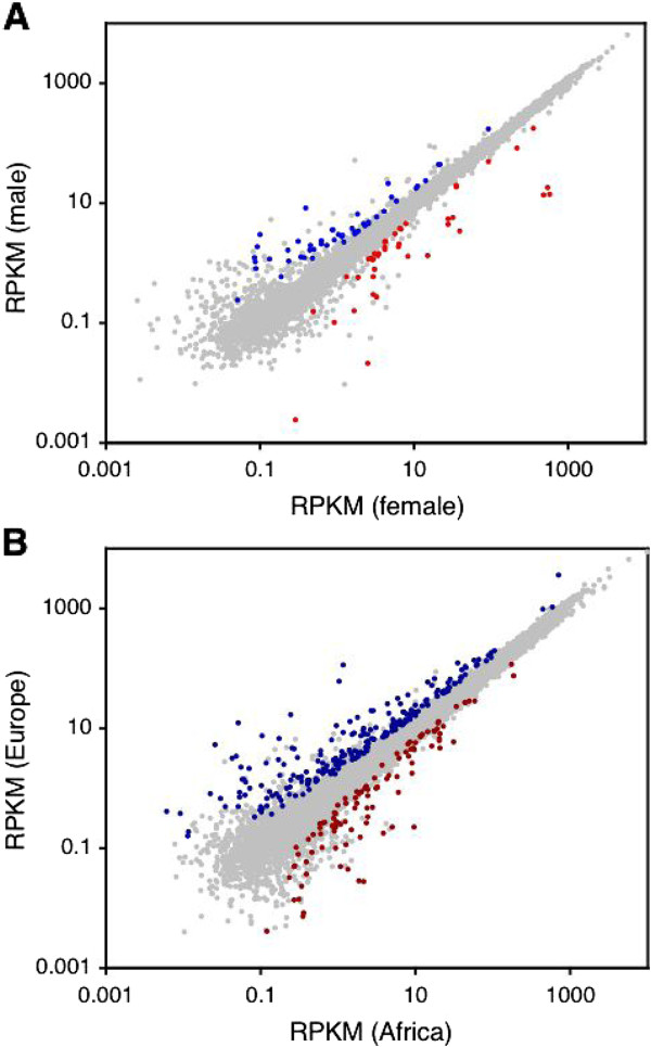 Comparison of gene expression between sexes and populations (A) Dot