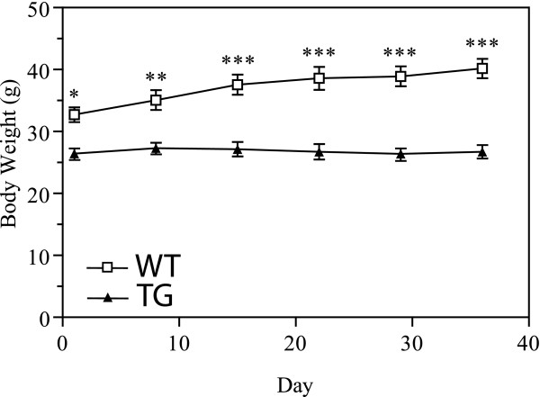 Weight Gain in Response to a HFD TG males failed to increase body - weight by measurements