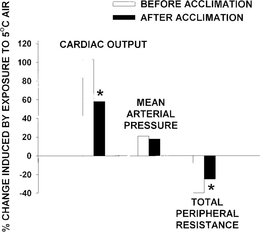 diagram of cardiac output