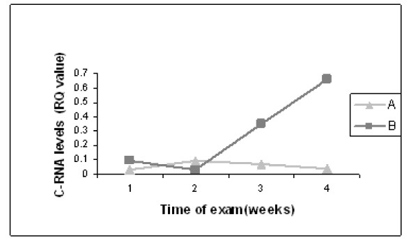 Tie2 mRNA levels and increased brain echogenicity Serial head US