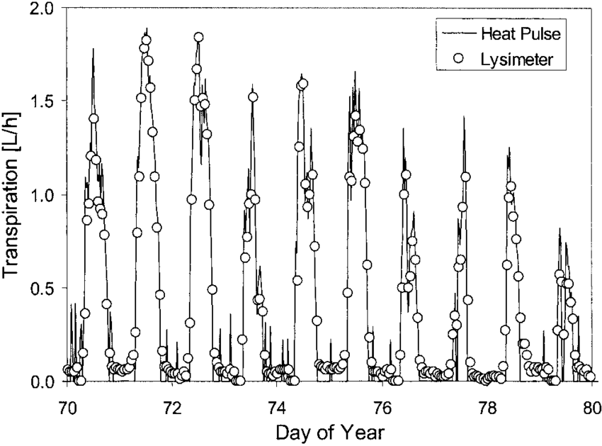 diagram of poplar tree