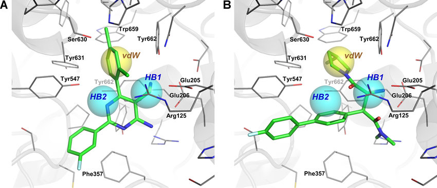 Three different binding modes of interaction of DPP4 inhibitors in