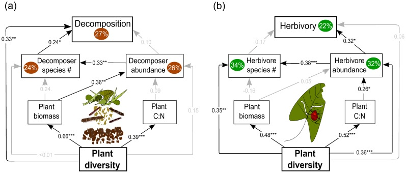 Models relate plant community variables (diversity, quantity and