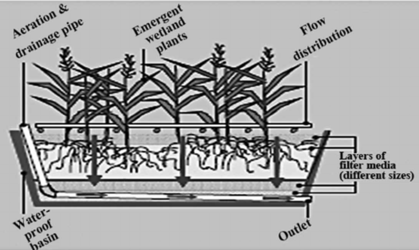 wetland filter diagram