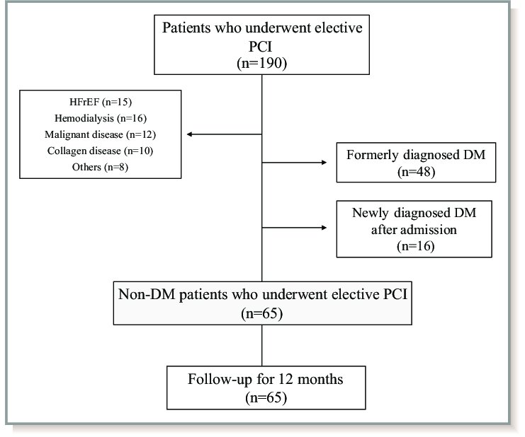 Study protocol flow chart DM indicates diabetes mellitus; HFrEF