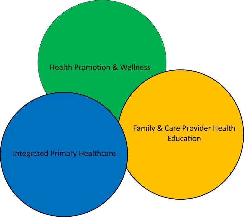 The major components of healthcare delivery Download Scientific - health components