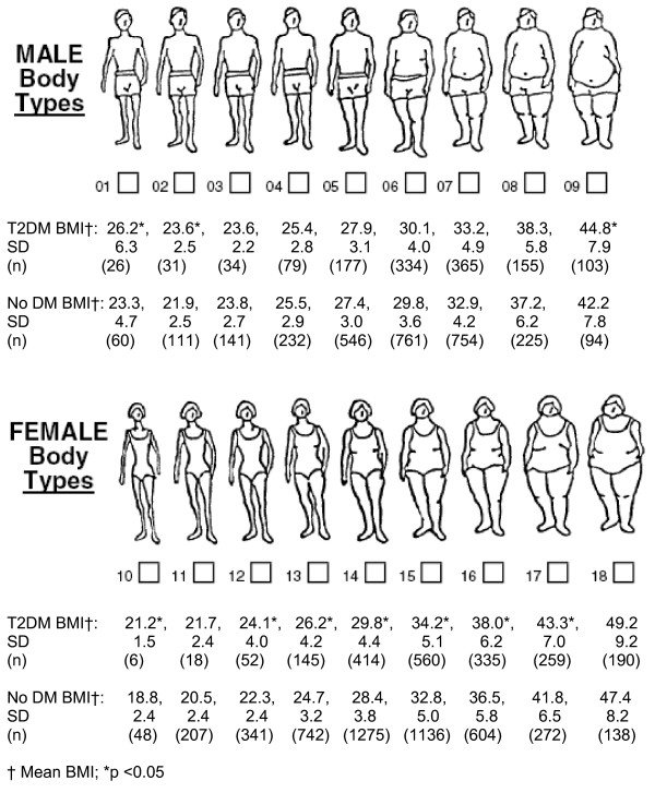 Body image figures and mean body mass index (BMI) for men and women
