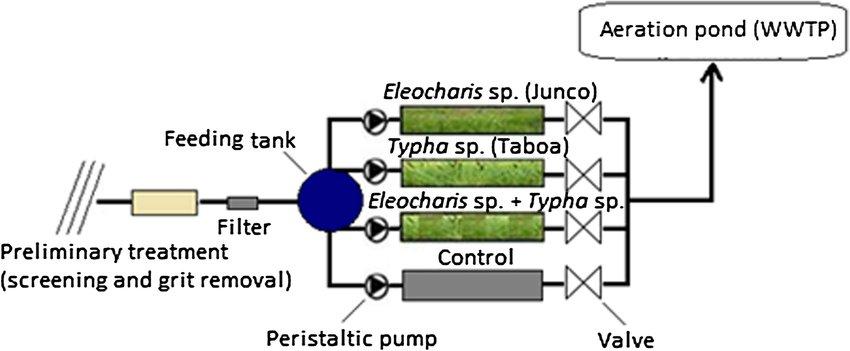 Schematic of constructed wetland pilot experiment Download
