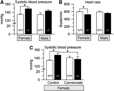 Hyperaldosteronism and hypertension in task1−/− mice (A) In tail