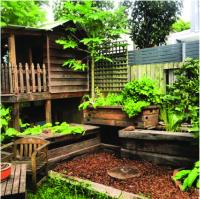 Backyard Aquaponics System | Outdoor Goods