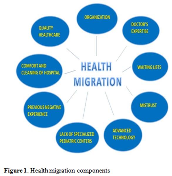 Health migration components Download Scientific Diagram