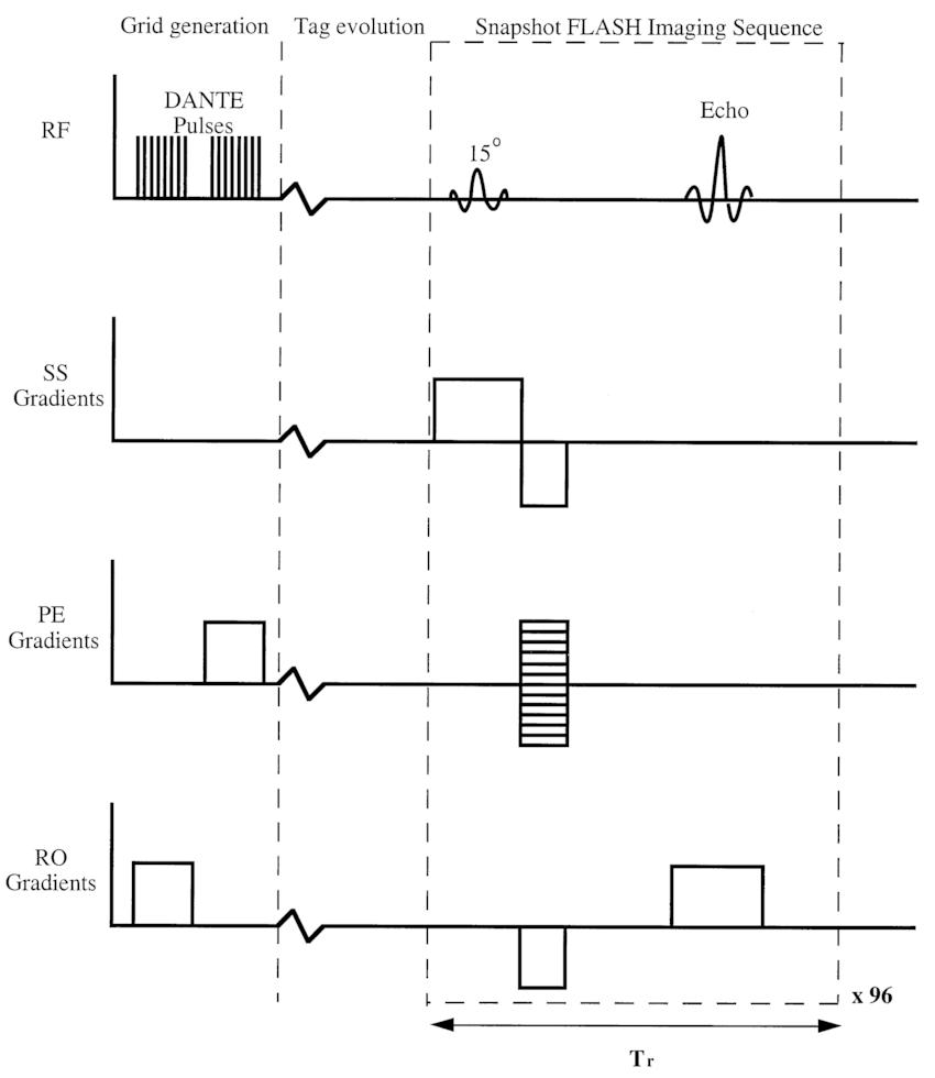 taylor scientific method diagram