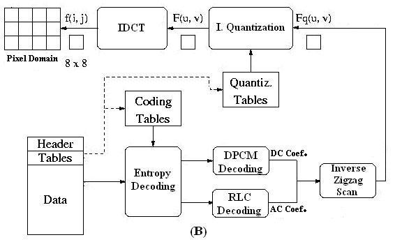 Block diagram of JPEG (A) coding (B) decoding procedures Download