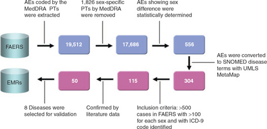 Fda Flow Chart - Wiring Diagrams \u2022