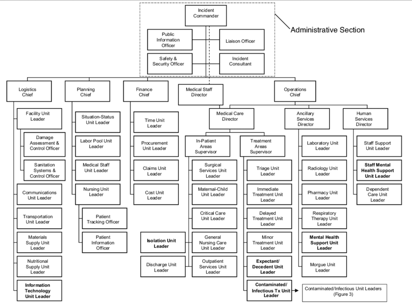 ics organization diagram
