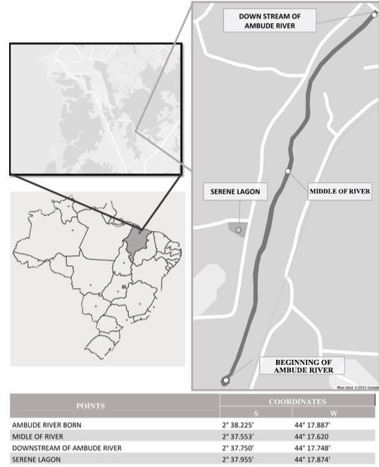 Capture region of specimens C macropomum at EPA of Maracanã Sites