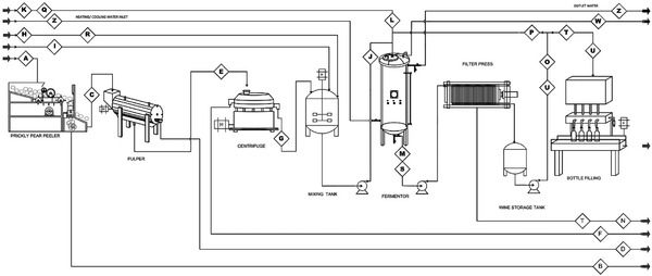 Process flow diagram (PFD) for prickly pear wine production