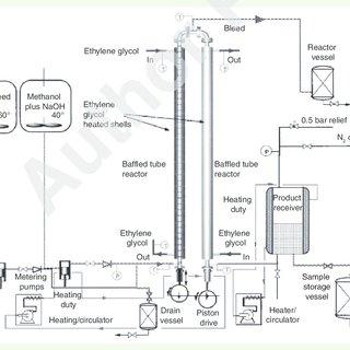 process flow diagram biodiesel production