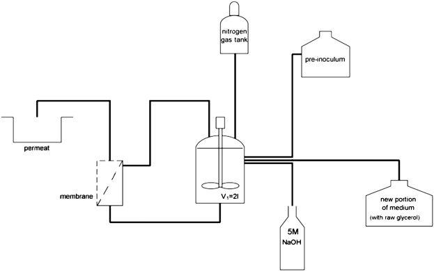 The block diagram of the fermentation process with filtration module - process block diagram