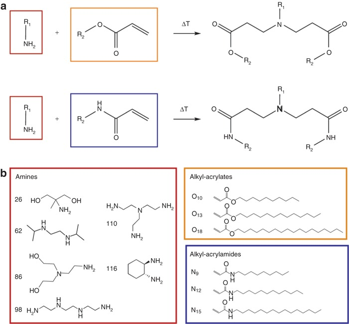 Lipidoid synthesis reaction and library (a) A Michael addition - synthesis reaction