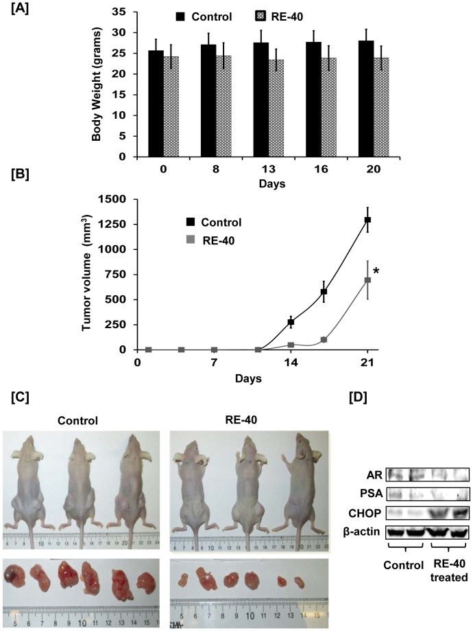 A) Graph of body weight measurements in grams for control and RE-40
