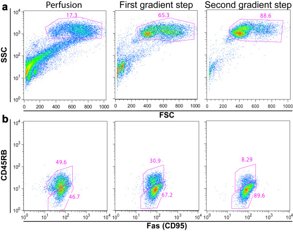Checking hepatocyte enrichment by flow cytometry analysis (a