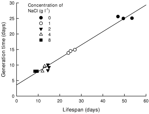 Relation between average lifespan and generation time in B