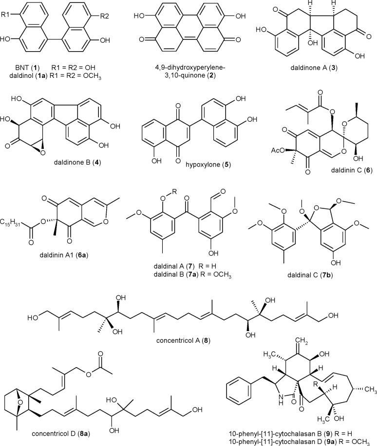 Secondary metabolites from stromata of Daldinia Distribution 1